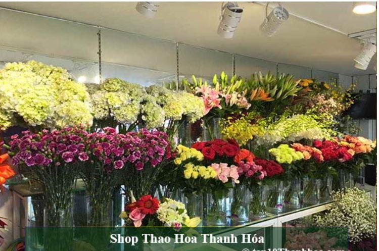 Top 10 Shop Hoa Tươi uy tín và đa chủng loại tại Thanh Hóa